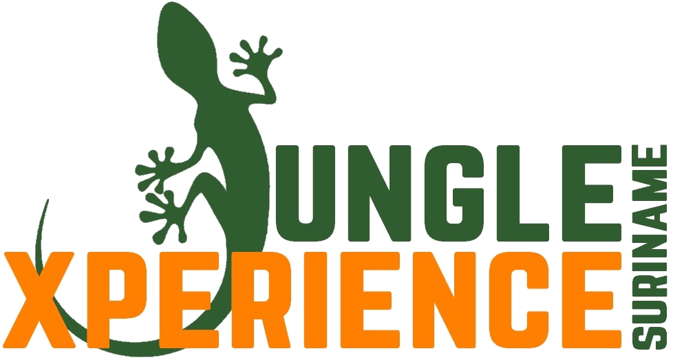 Jungle Xperience Suriname
